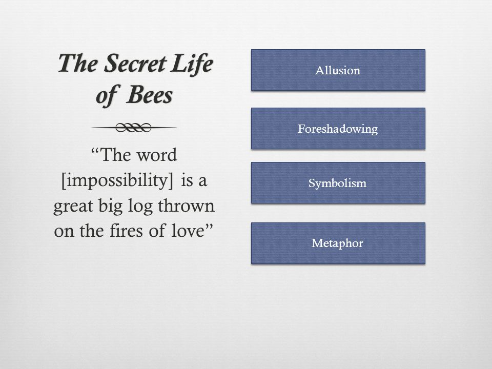 The Secret Life of Bees Allusion. Foreshadowing. The word [impossibility] is a great big log thrown on the fires of love
